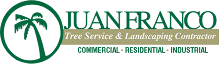 Juan Franco Tree Service - Serving the Community for over 30 Years